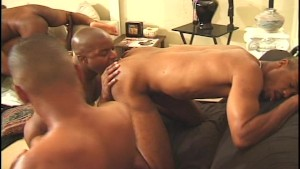 Room Full of black Cocks and Balls - Heatwave Entertainment