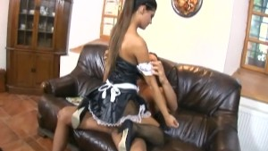 maid humping in her uniform and fishnet stockings xxx.harem.pt