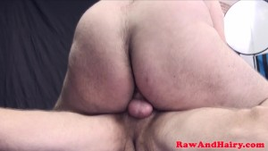 Chubby bears bareback buttfucked