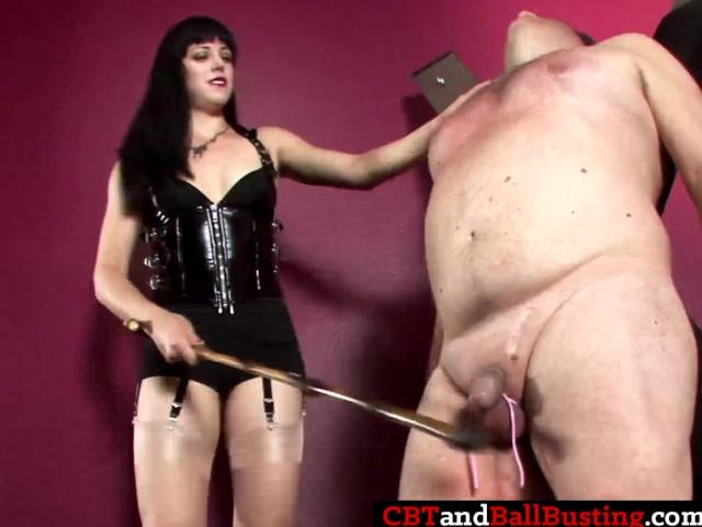 cbt ball busting sexszenen kostenlos